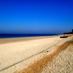 mudfest boryeong beach korea