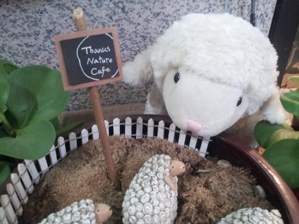 Hello Nature Cafe (Sheep stuff EVERYWHERE!)