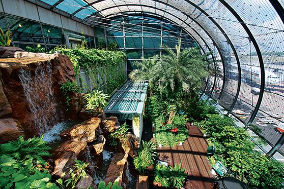 dubai-airport-zen-gardens