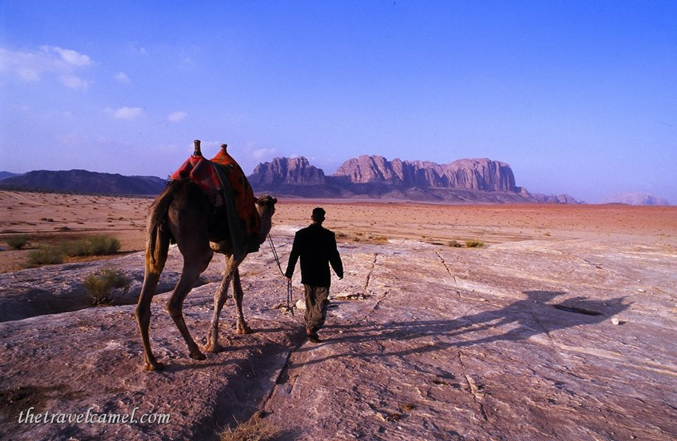 the-travel-camel