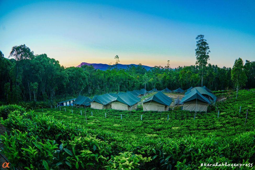 kerala-camping