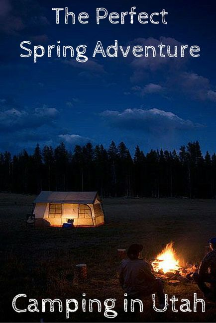The Perfect Spring Adventure