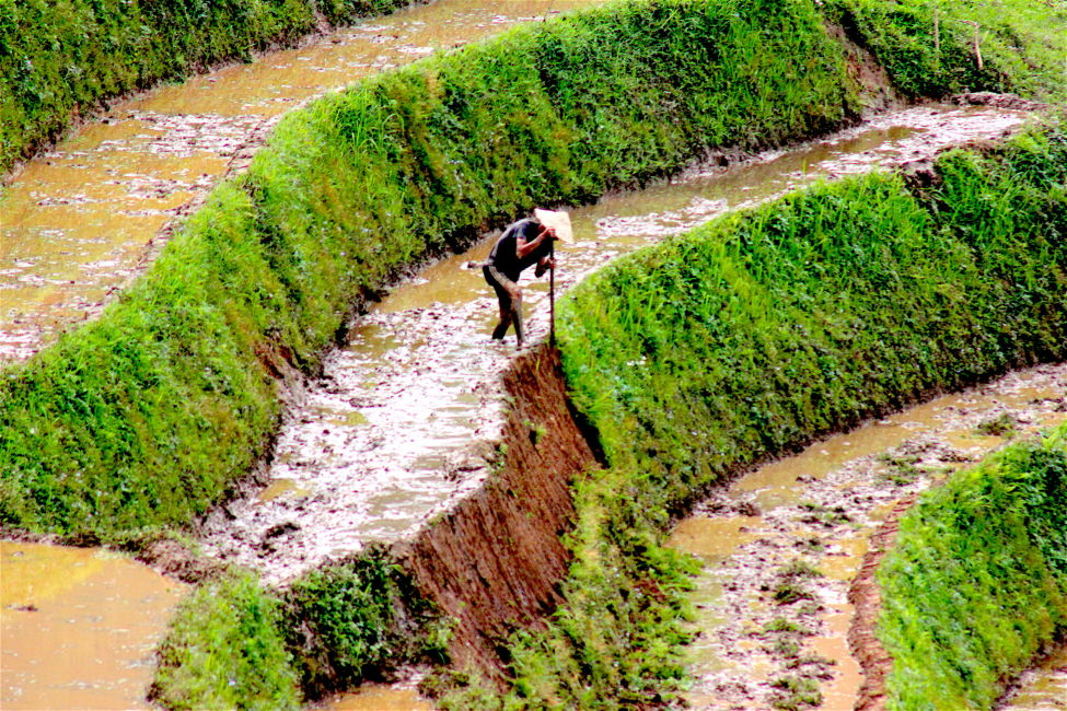 best time to visit vietnam - rainy season