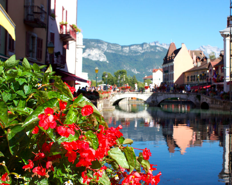 old-town-flowers
