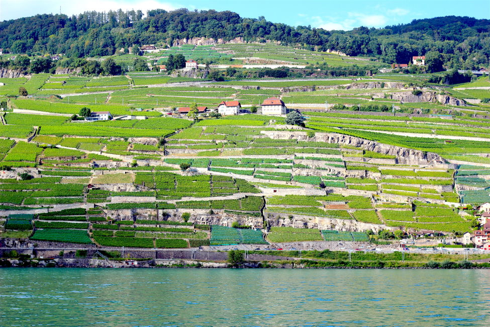 lavaux-vineyards-switzerland