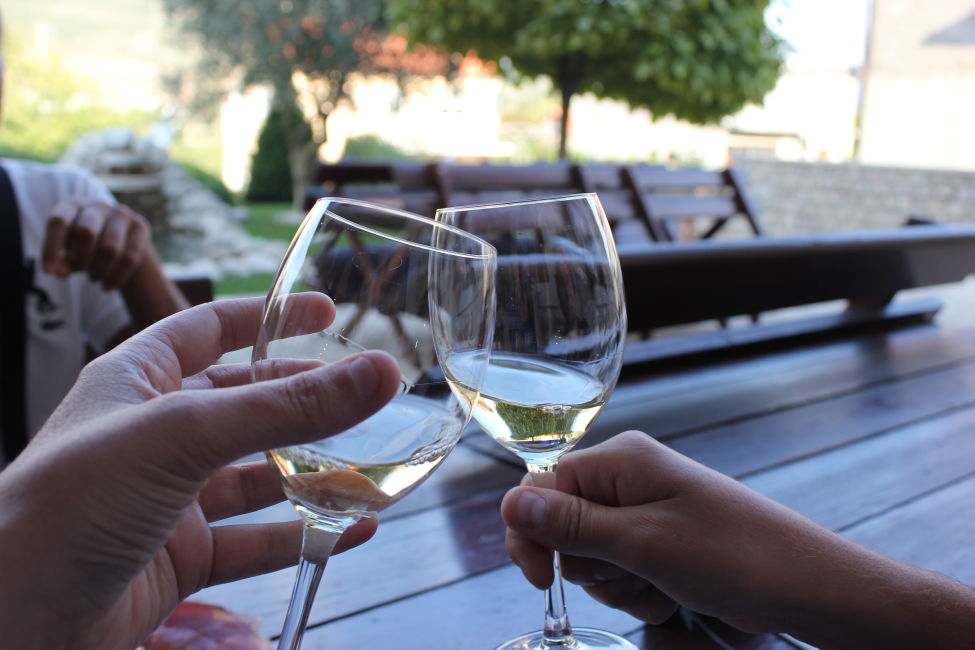 wine-tasting-bosnia-unique things to do