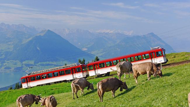 mount-rigi-train