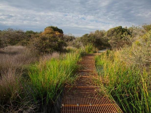Visit Australia: Five Great Walks In Sydney