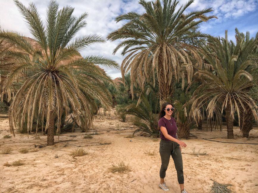 expat-dahab-egypt