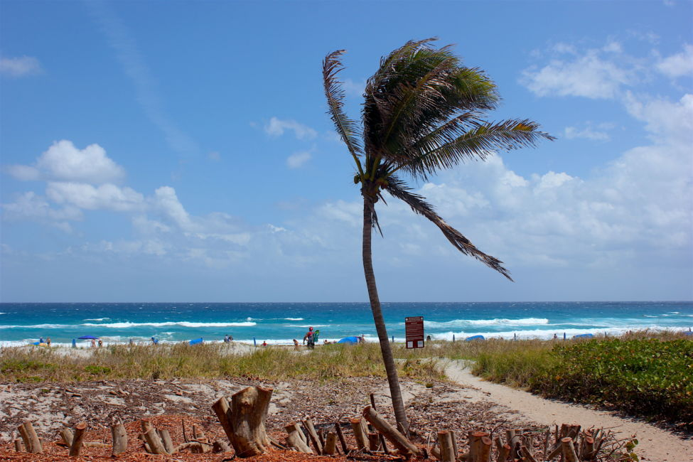 There's Something Special About Delray Beach, Florida