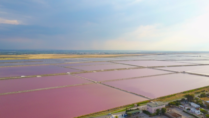 pink lakes puglia