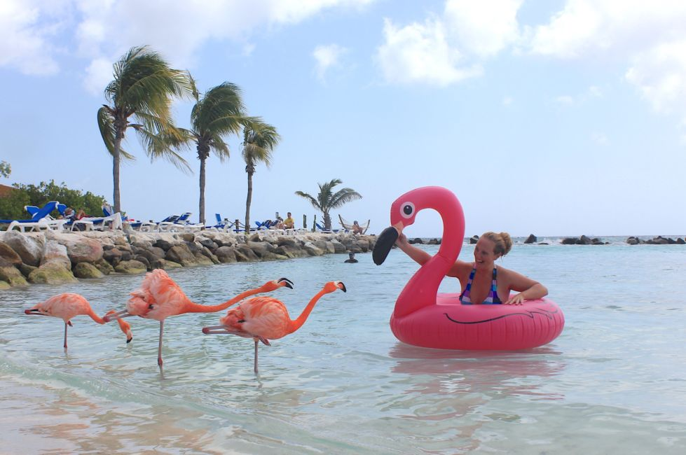 Flamingo Beach Aruba Hotel