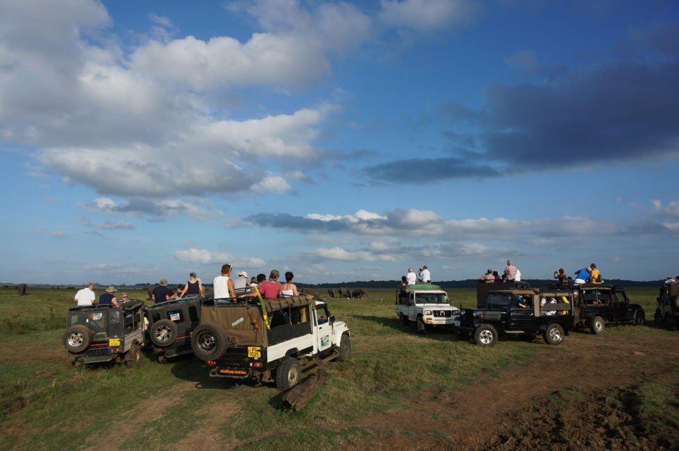 safari jeeps sri lanka