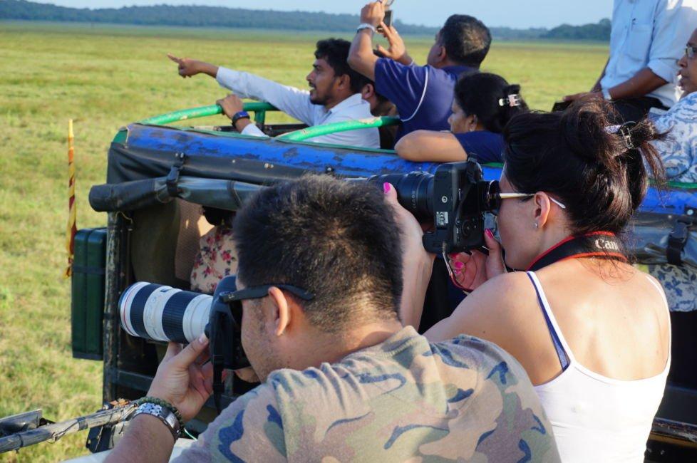 safari tourists sri lanka