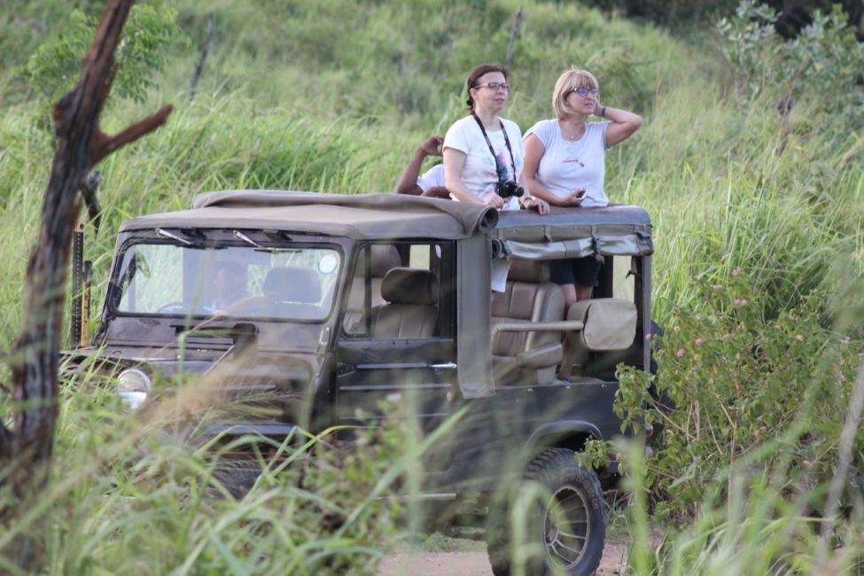 safari photographers