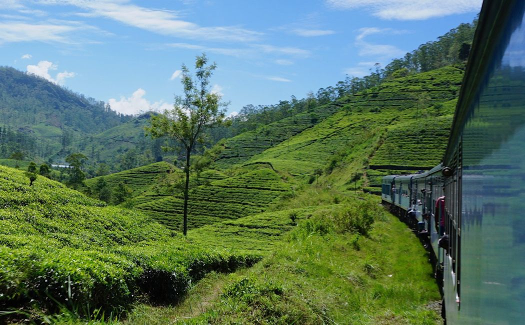 nuwara eliya train