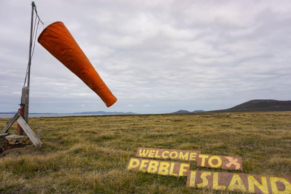 visiting the falkland islands
