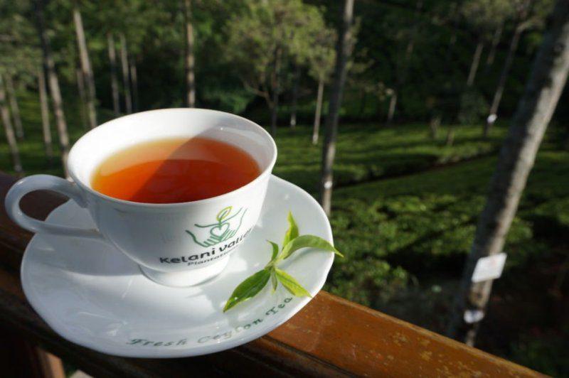 lover leap tea