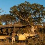 safari jeep in tanzania