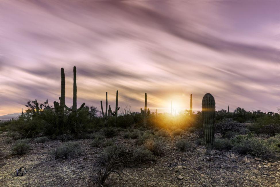Tucson Arizona road trip