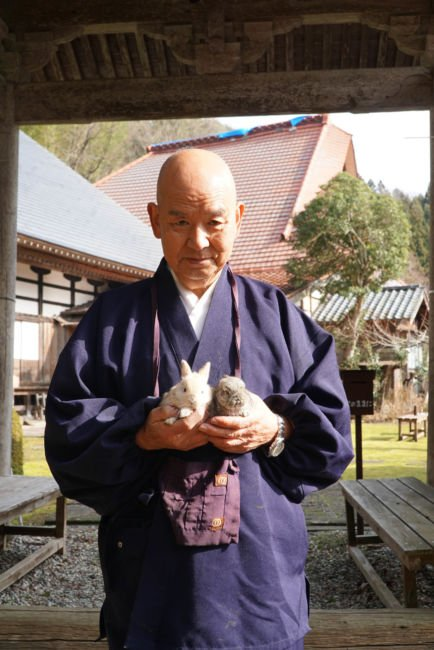monk with pet rabbits