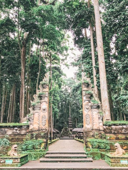 sangeh forest bali