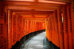 day trips form kyoto