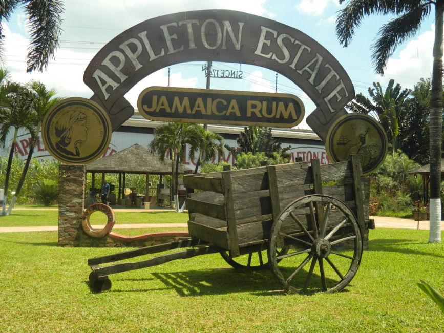 apple rum factory Jamaica