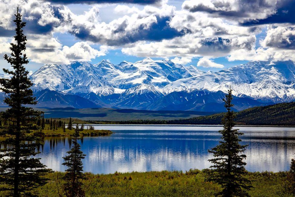 wildlife holidays North America