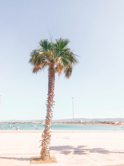 torre canne beach front