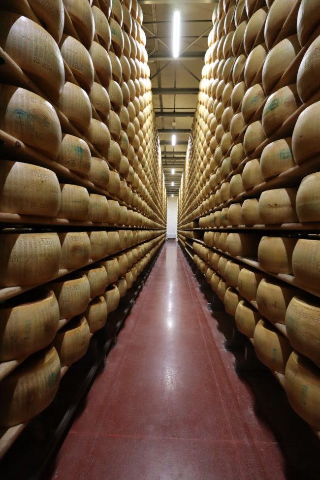 parmigiano reggiano farm Modena