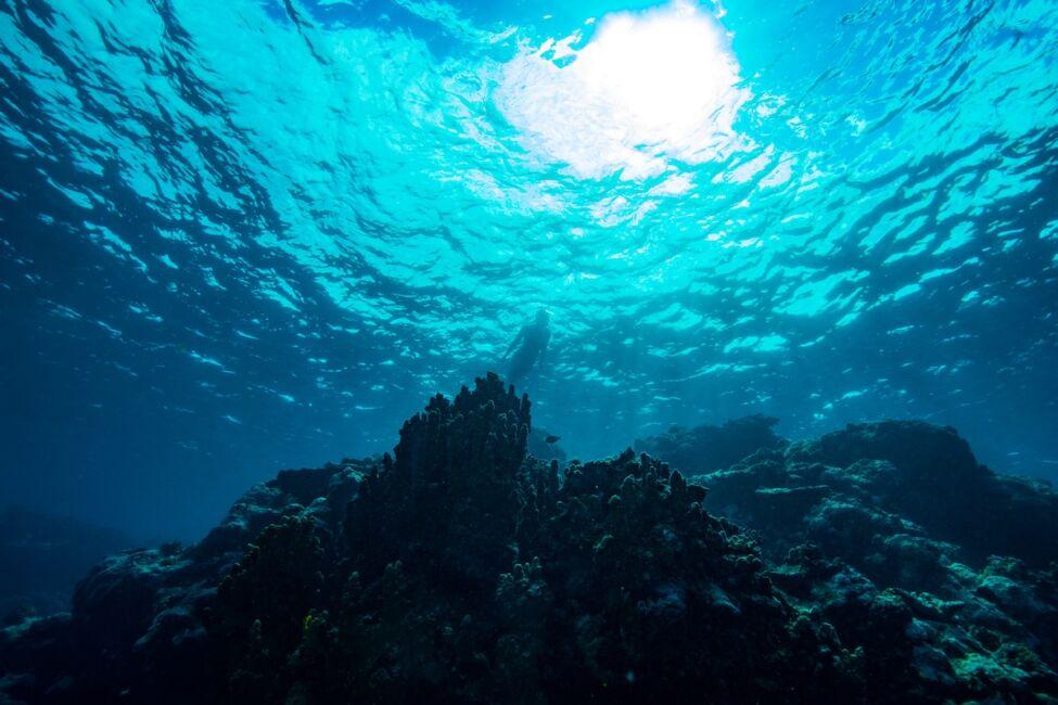deep marine reserve samoa