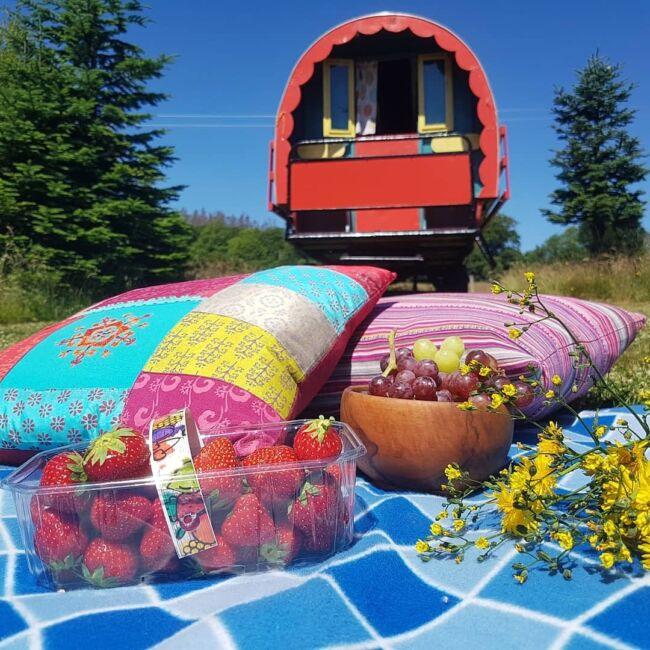 caravan holiday wicklow
